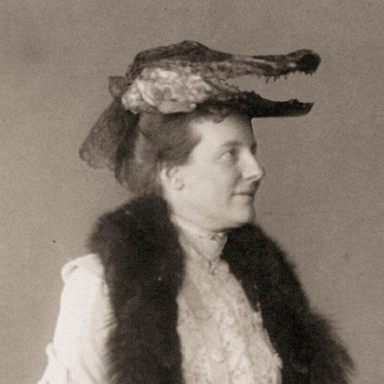 Mrs. Alee Gator