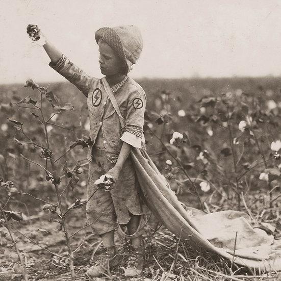 Cottonman