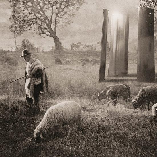 Shepherd's Secret