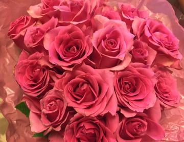 Rose from my fan