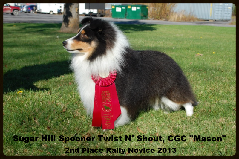 Mason 2nd Place in Rally 2013