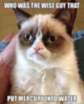 Grumpy cat meme - who put mercury in water?