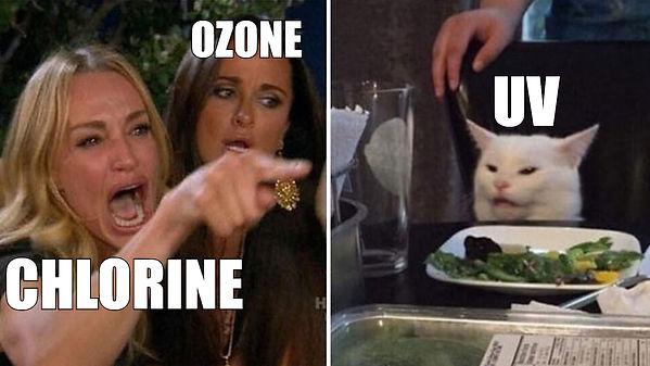 ANGRY LADY CAT MEME chlorine ozone UV