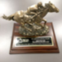 2017local economy boost award - bronze horse