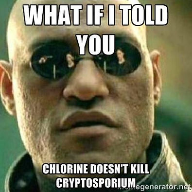 "Matrix meme - Morpheus ""What if I told you Chlorine doesn't kill Cryptosporium"""
