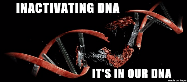 Inactivating DNA - it's in our DNA meme