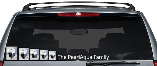 "Car meme - PearlAqua in back window of suburban ""The PearlAqua Family"""