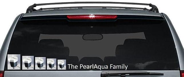 "Car meme - PearlAqua in back window of suburban ""The PearlAqua Family"""