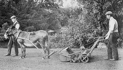 Donkey mower.jpg