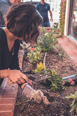 komunitni zahrada_small.jpg