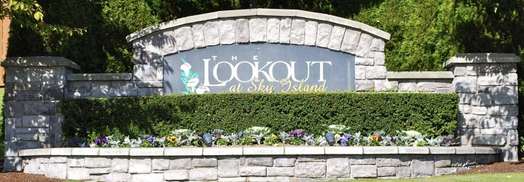 Welcome to The Lookout