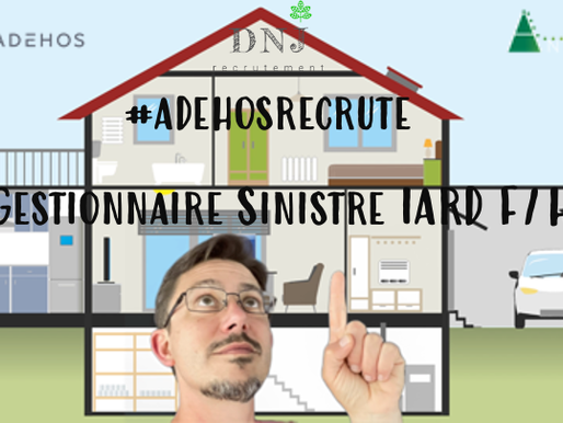 Gestionnaire Sinistre F/H