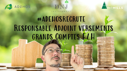 Responsable Adjoint Versements Grands Comptes F/H