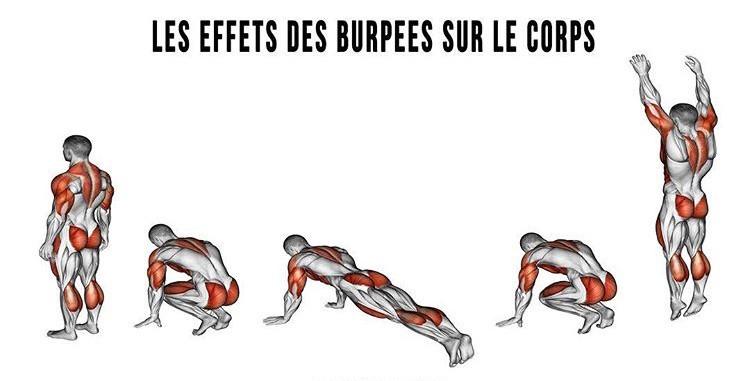 DS Fitness Les effets des burpees sur le corps