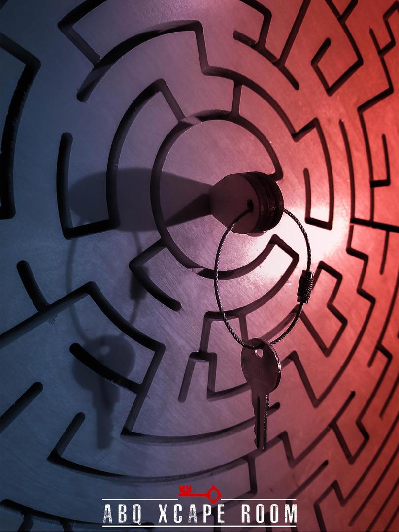 Da Vinci Maze.jpg