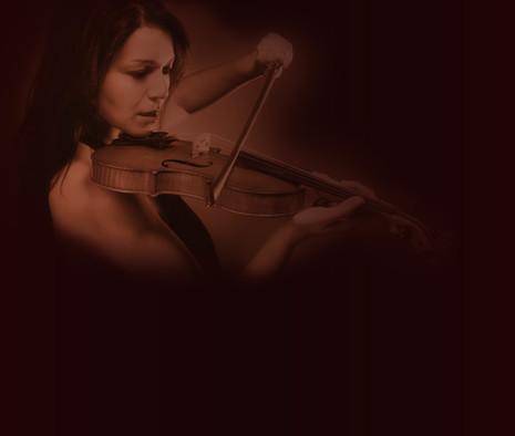 Violinist Zusammenfassung