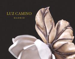 Detalle inivt L Camino