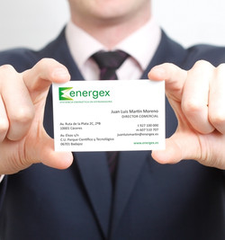 Tarj Visita Energex n