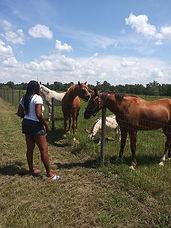 me and horses.jpg