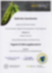 Zertifikat_Ernährungsberaterin.jpeg