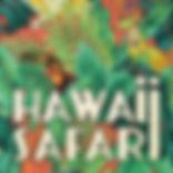 Hawaii Saf Cd.jpg