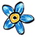 blue%2520forget-me-not_edited_edited.png