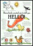 Birds-HELLO+border.jpg