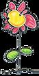 flower%20color_edited.png