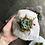 Thumbnail: Succulent Quartz Planter