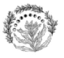 Liz logo 4.jpg