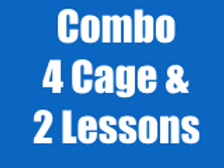 Combo #2: 4 Cage Visits & 2 Lessons