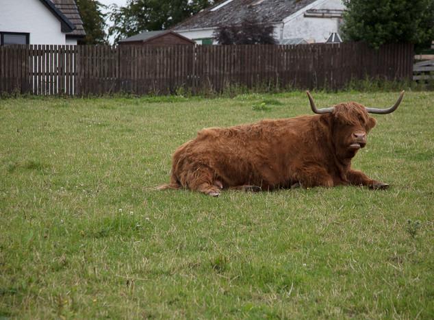 20170715 Scotland Inverness-84.jpg