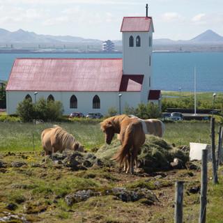 20180719 Iceland-17.jpg