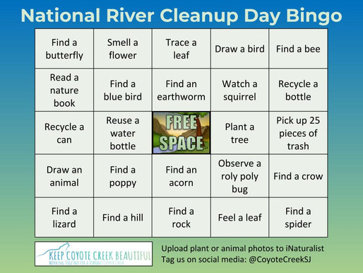Bingo - For Our Rivers