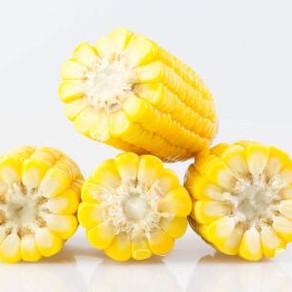 素高汤—玉米菌菇素高汤