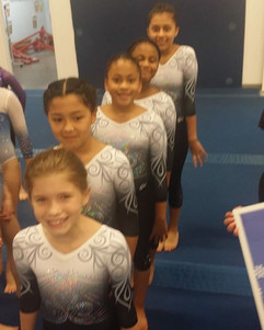FIF AAU Girls Perfect Balance 2019