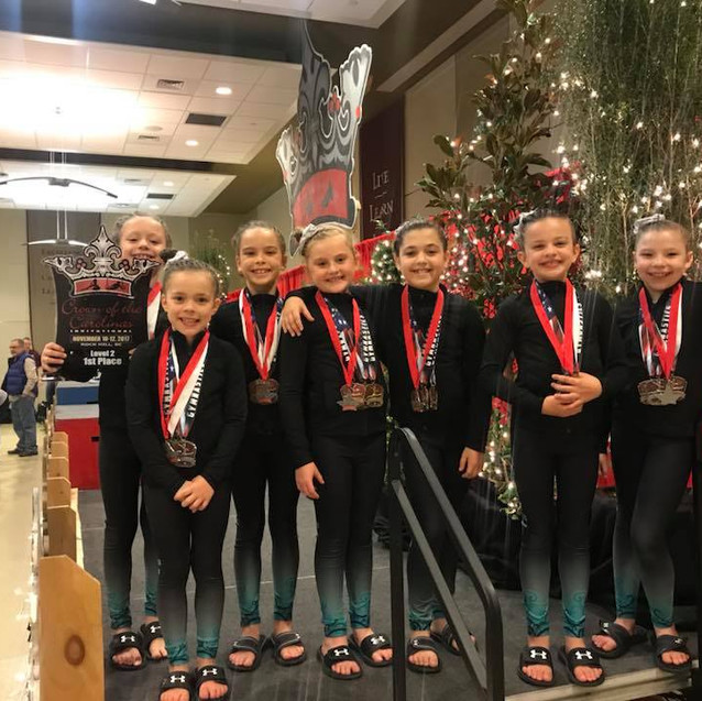 FIF Level 2 1st Place Team Crown 2017