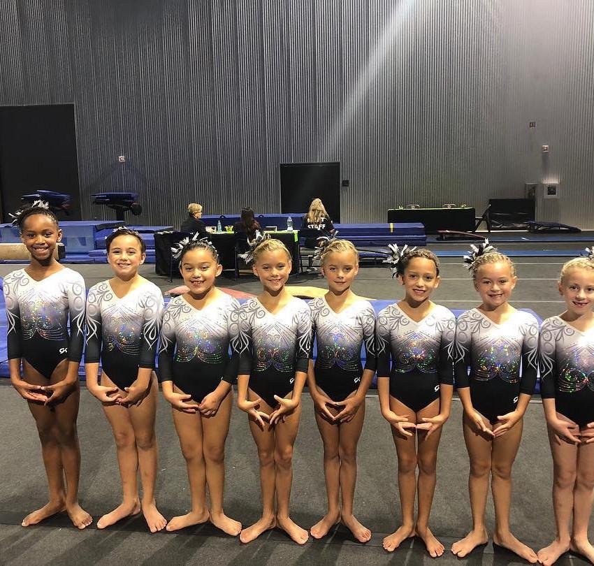 First in Flight Gymnastics Level 2 Apple