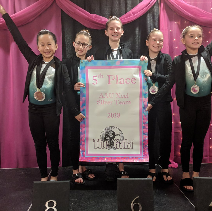 FIF AAU Silver 5th Team The Gala 2018