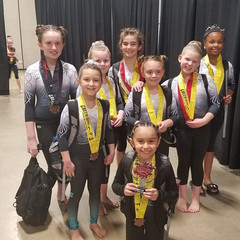 FIF Xcel Greensboro Gymnastics Invitational 2019