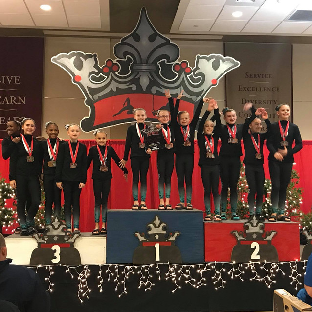 FIF Level 4 1st Place Team Crown 2017