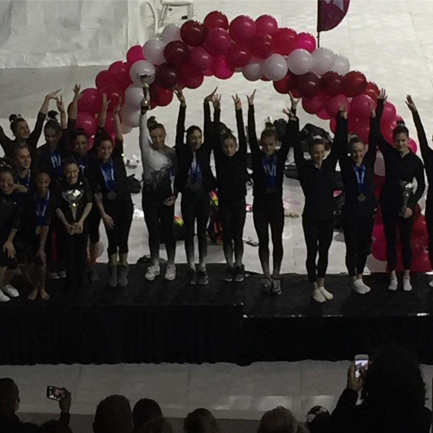 FIF Girls Level 10 2nd Place Team WOGA C