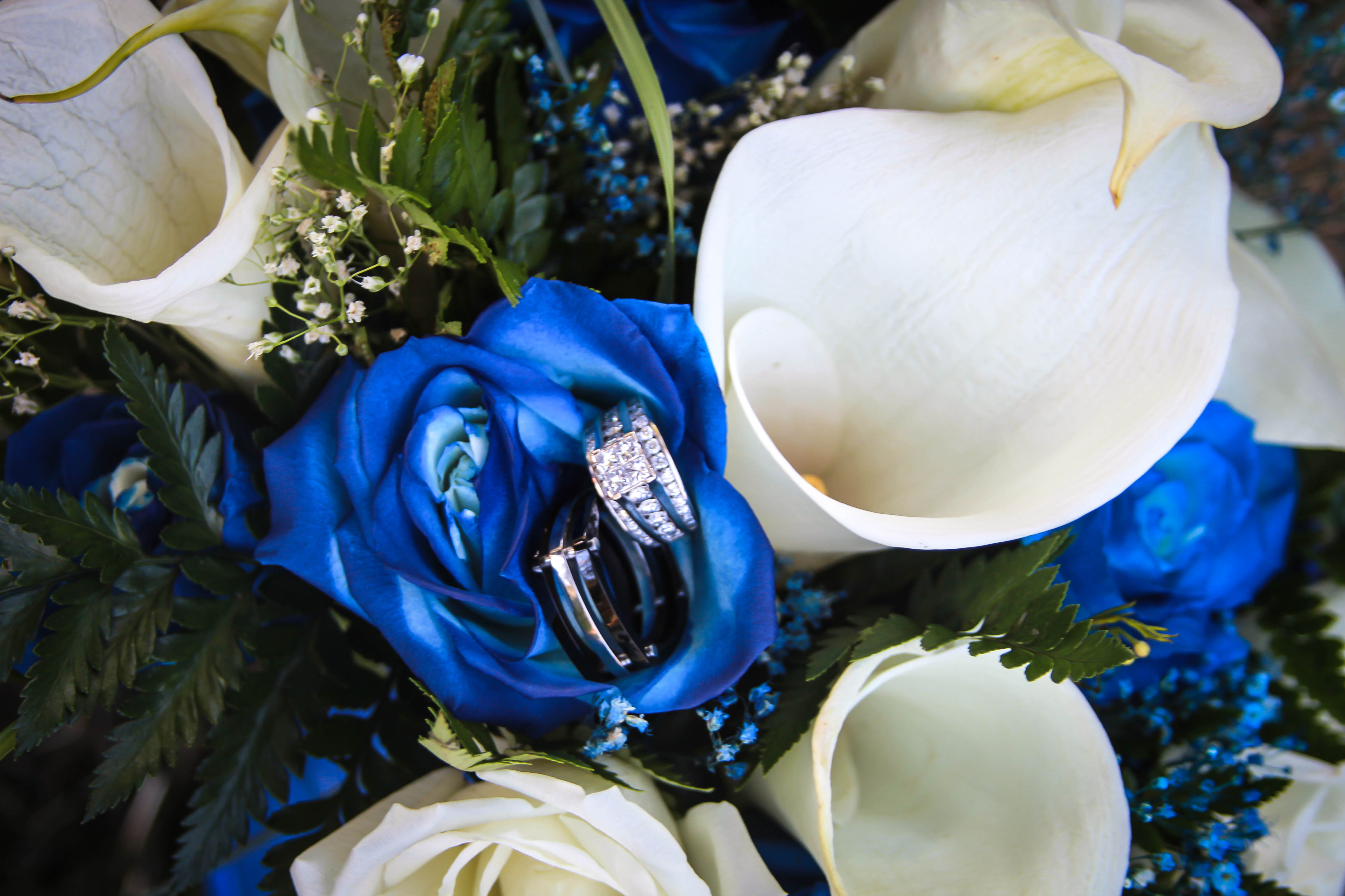 Sprayed blue roses and callas