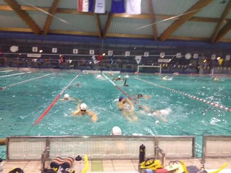 20 swibirovaca na treningu plivanja u 06.jpg