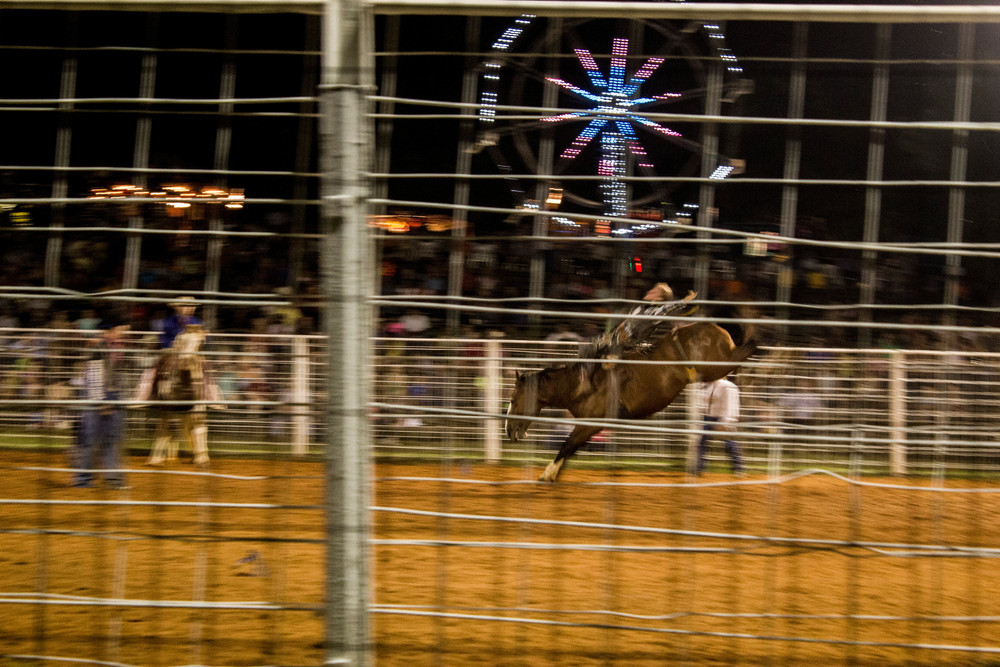 Rodeo.2.jpg