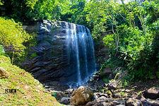 Grenada Kofi D Julien 4.jpg