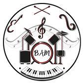 Be a Musician - Ecole de musique - Alex Baccini