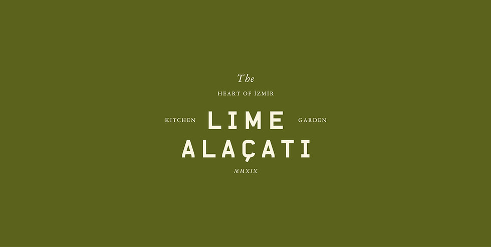 Lime-Portfolio-03.jpg