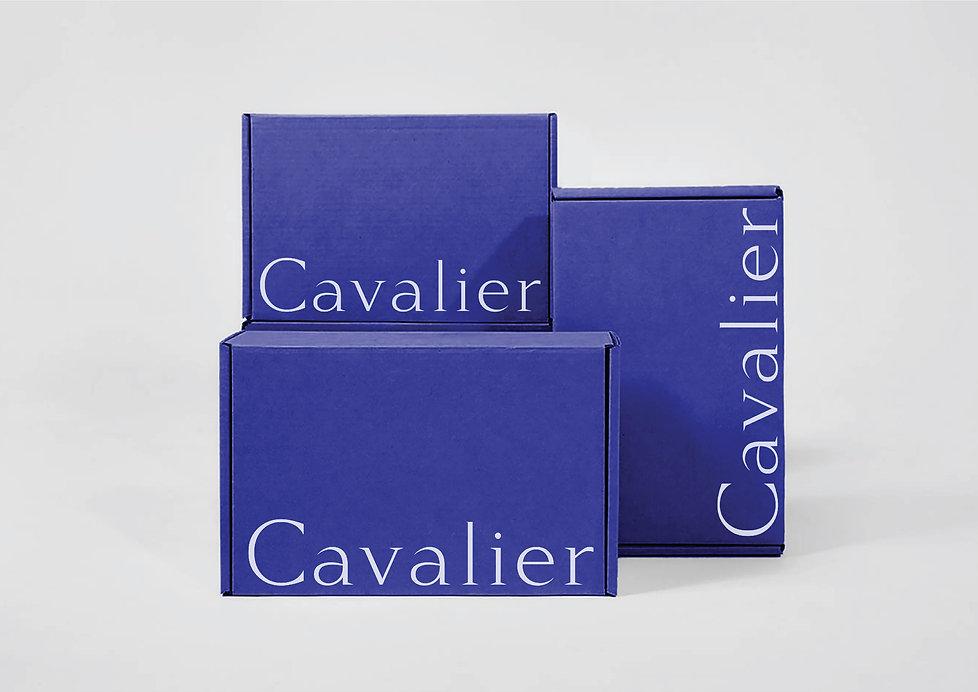 cavalier-portfolio,-09.jpg