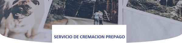CREM_PE¿REPAGO.jpg